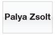 Palya Zsolt használtautó vételi tanácsadó