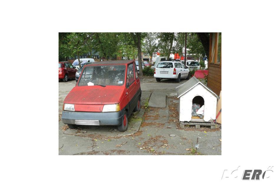 Helyenként még felbukkan belőle egy-egy példánya a magyar Pulinak. Ez a darab a Közlekedéstudományi Intézet (KTI) udvarán évek óta egy helyben áll, stílusosan egy kutyaól szomszédságában.
