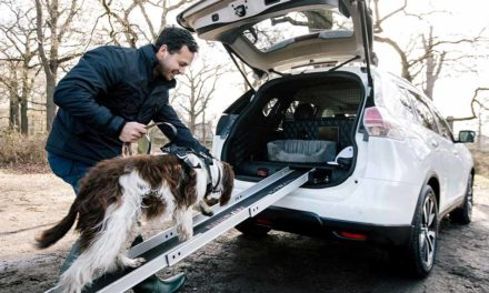 Nissan X-Trail 4Dogs a négylábú kedvencekért