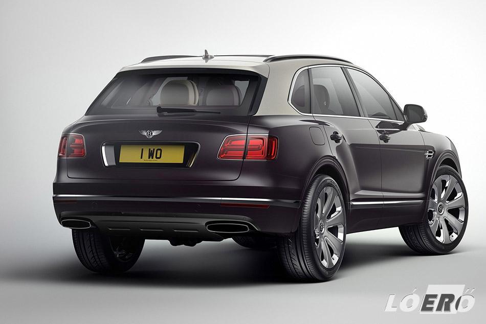 A 2,5 tonnás saját tömeg a motor képességein nem fog ki, 0-100 km/h-ra 4,1 másodperc a gyorsulás, a végsebesség pedig 301 km/h, amivel a Bentley Bentayga jelenleg a leggyorsabb széria SUV a piacon.