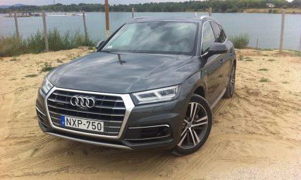 Ezt jól megcsinálták – Audi Q5 teszt – 2.0 TDI quattro S tronic