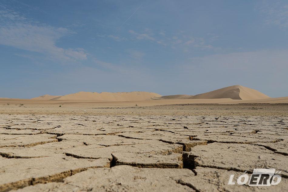 Megérdemelték volna, hogy átengedje őket a sivatag, a technika ördöge azonban közbeszólt.