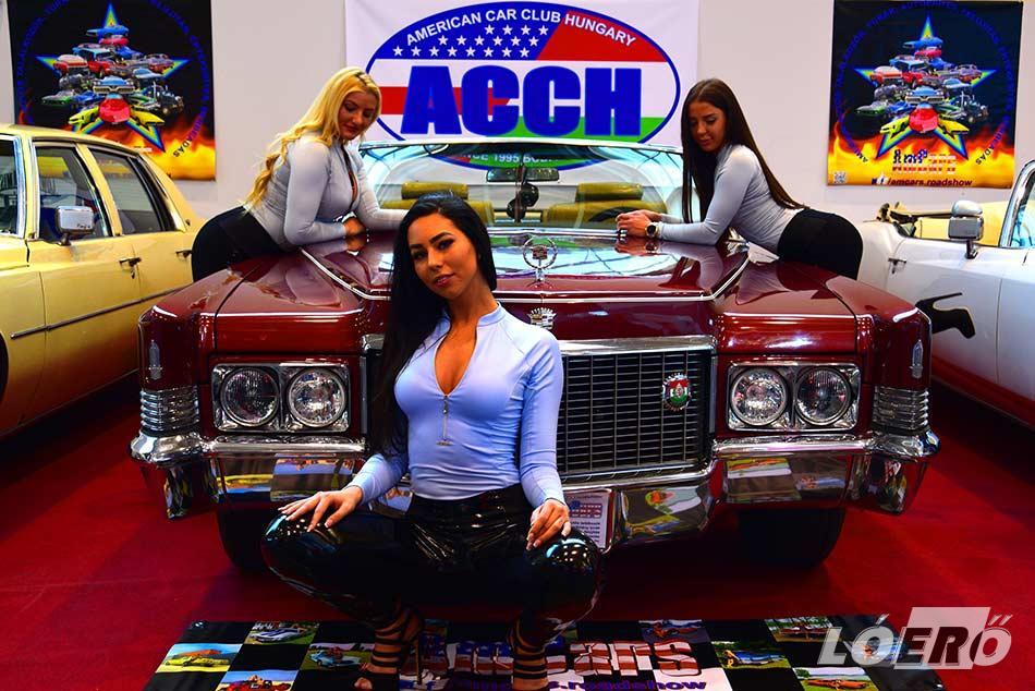 Az AmCars ferihegyi fesztiválján, természetesen hazánk legnagyobb klubjai is képviseltetik magukat, mint például az ACCH, a Ford Cruising, a Jeep Club, a Buick Club, a Lowrider Amistad, és még sorolhatnánk…