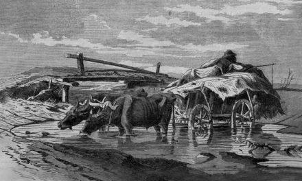 A taliga és a régi szekér – Ahol elkezdődött